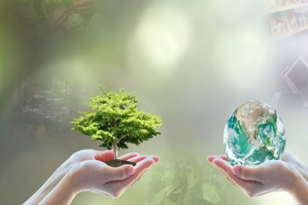 Industry report reveals blockchain could assist tackling deforestation